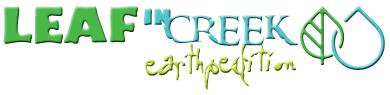 Leaf in Creek logo