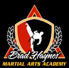 Brad Haynes Martial Arts Academy logo