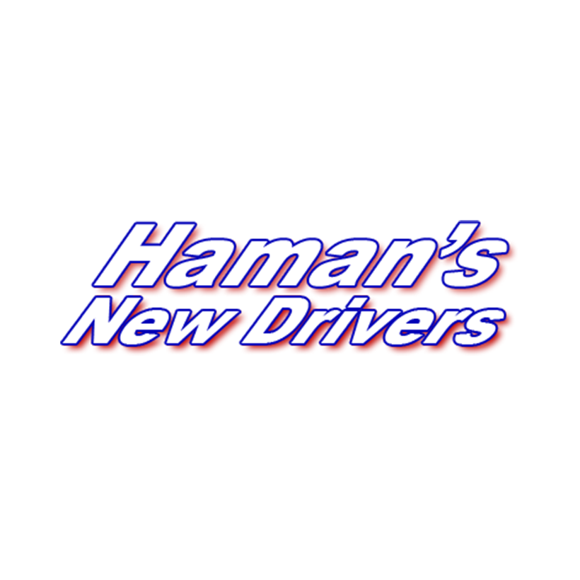 Haman's Driving School logo